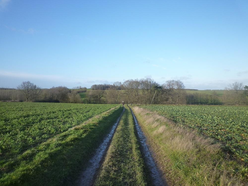P1030883 Chemin de randonnée(GARELLY)